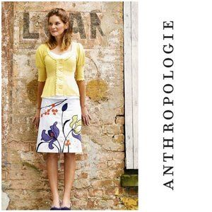 Anthropologie Lithe Iris Shoots Embroidered skirt